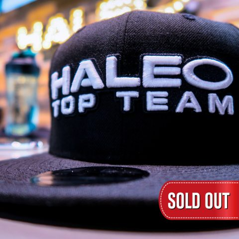 HALEO TOP TEAM × NEW ERA CAP 9FIFTY